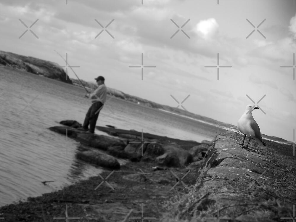 Seagull & Fisherman by daynov