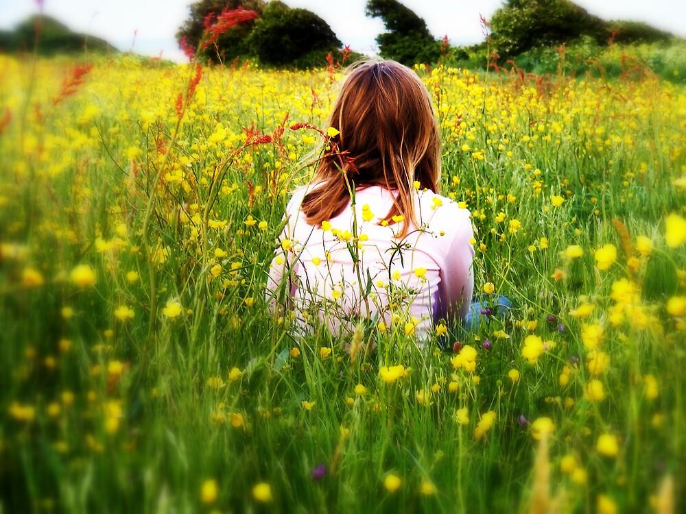 Sitting in the fields of gold  by Kelly d