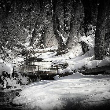 Dazzling Icy Daybreak by macduffstudio