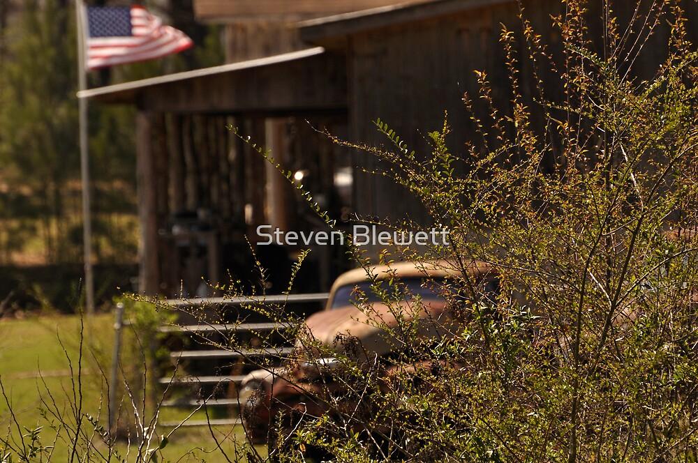 Alabama by Steven Blewett
