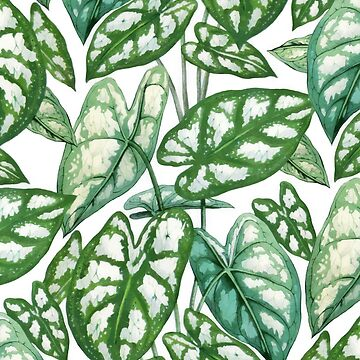 Green tropical leaves IV by CatyArte