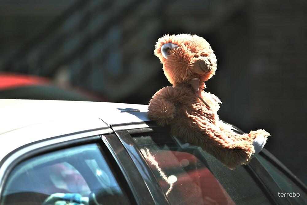 Teddy Car In SunLight by terrebo