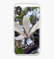 Magnolia flower   Photo iPhone Case