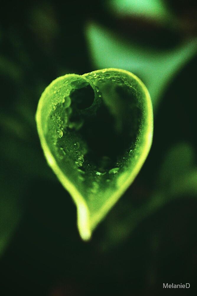 Lush Green Heart  by MelanieD