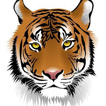 Tiger by belka