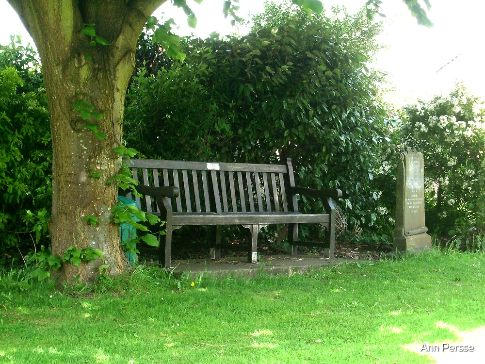 churchyard bench by Ann Persse