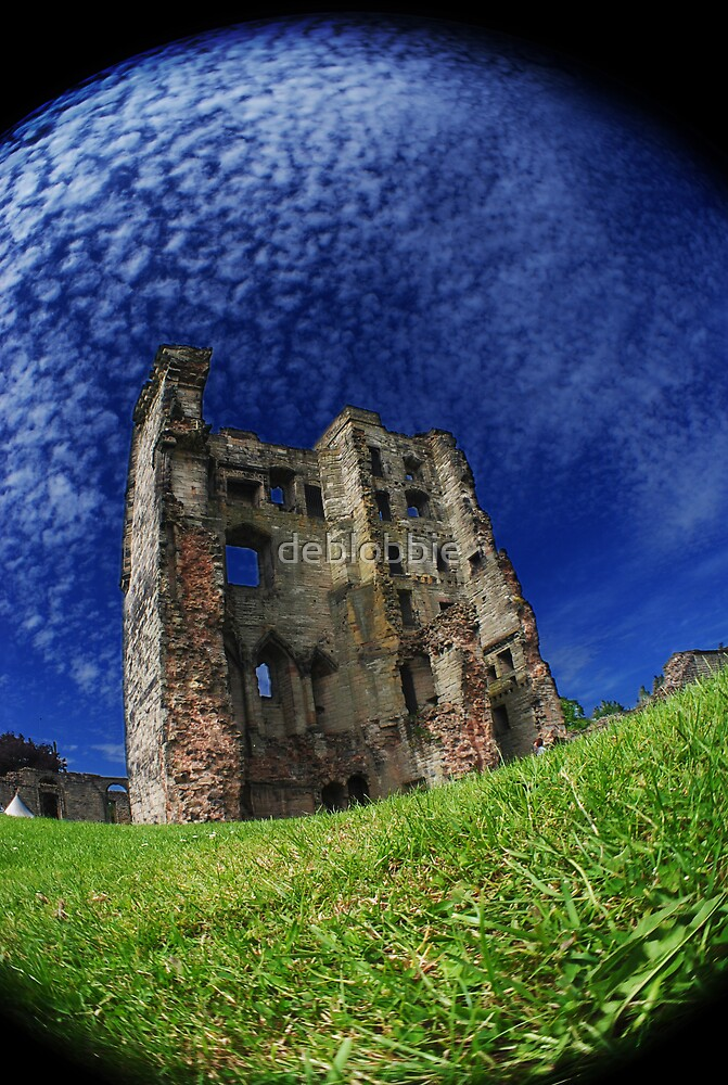 Ashby De-La-Zouch Castle 3 by deblobbie