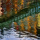 Ha'penny Reflections by sandgrouse