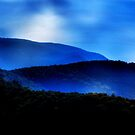 Feeling the Blues by Brian Gaynor