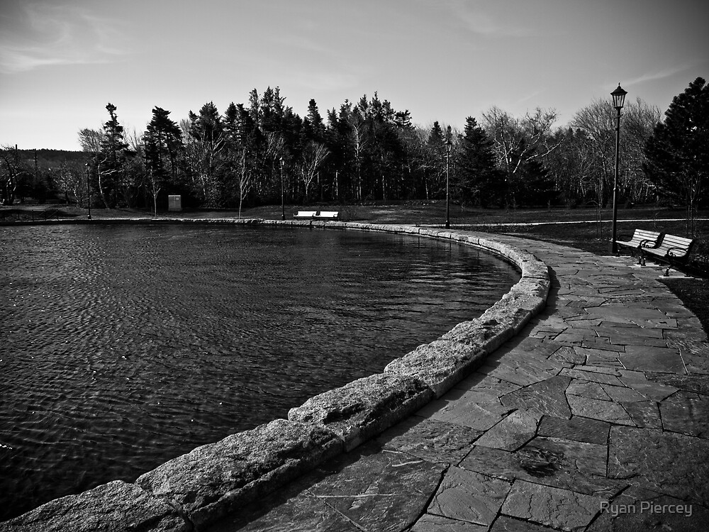 Around the Pond by Ryan Piercey