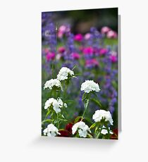 A Touch of Heaven Greeting Card