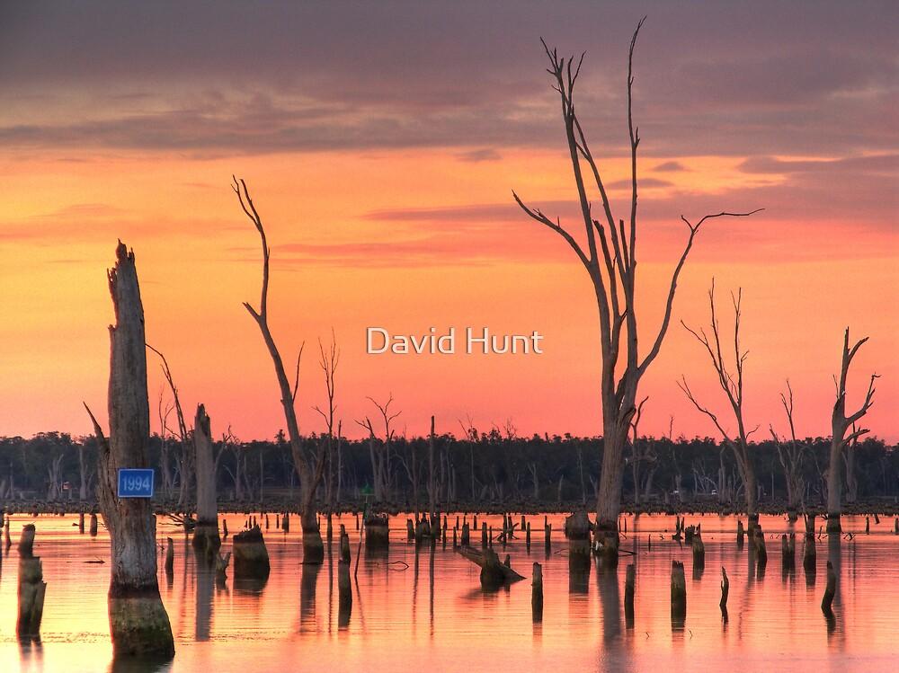 Pale Hues - Lake Mulwala by David Hunt