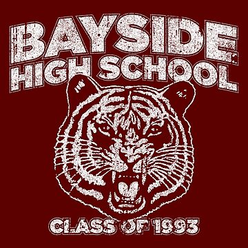 Bayside High School Class of '93 by huckblade
