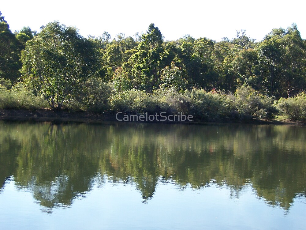 Beautiful Views 2 - Reflections by CamelotScribe