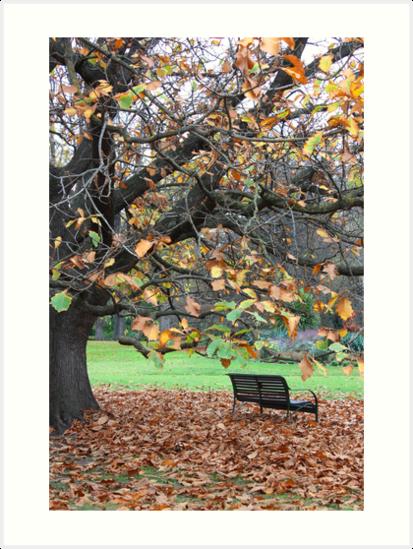 Fitzroy Gardens by Ian Stevenson