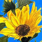 Sunlit Sunflower on Blue Sky by Marcella Chapman
