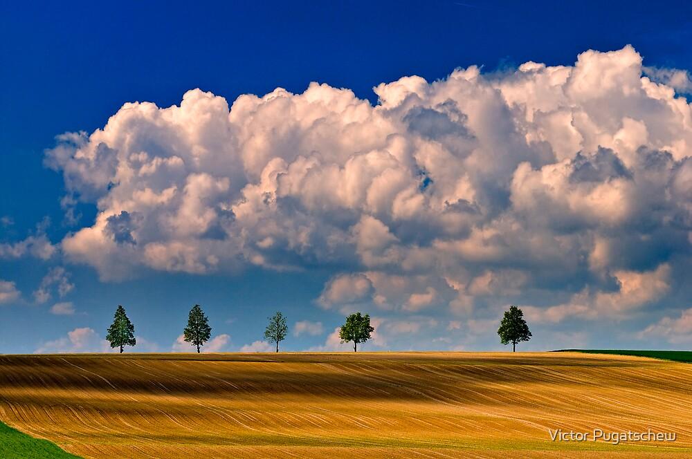 Ploughed fields. by Victor Pugatschew