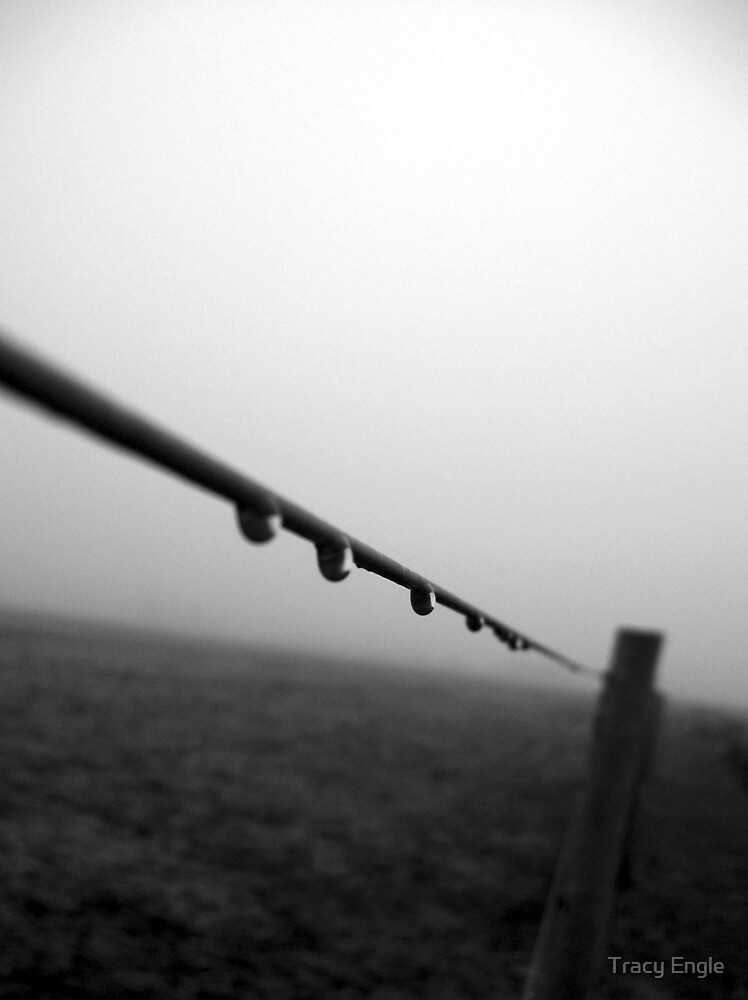 Drops of Fog by Tracy Engle