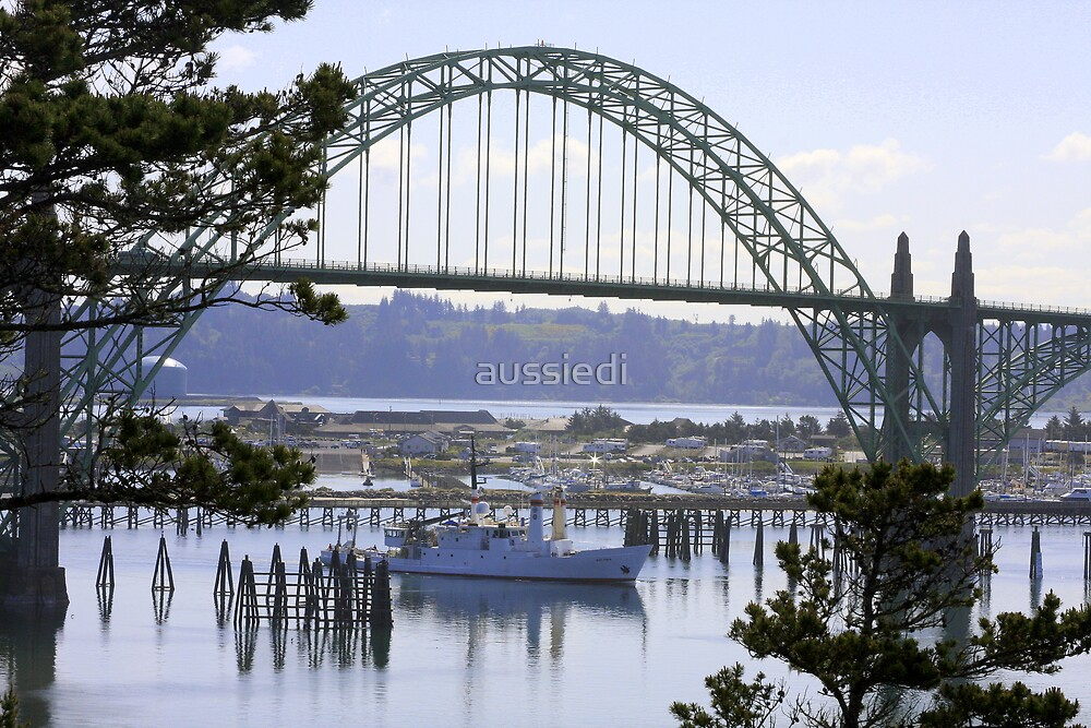 Yaquina Bay Bridge #2 by aussiedi