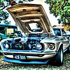 Mustang HDR by Michael Rowley