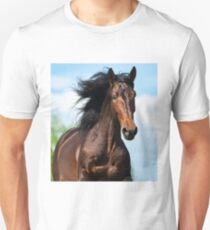 Bay andalusian stallion in motion Unisex T-Shirt