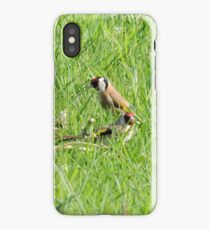 Charms In The Grasses iPhone Case