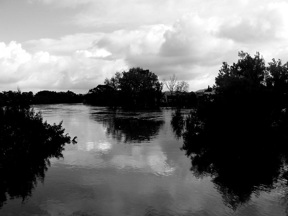 The Flood by henrydark