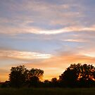 Dusky Evening... by BellaStarr
