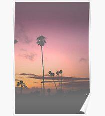 Miami sunset Poster