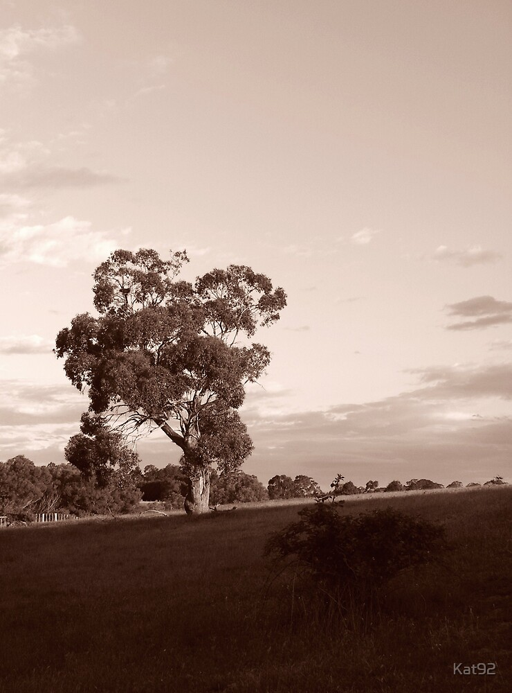 country landscape by Kat92