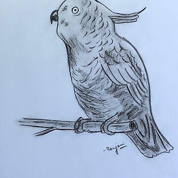 Bird by ranjaniart