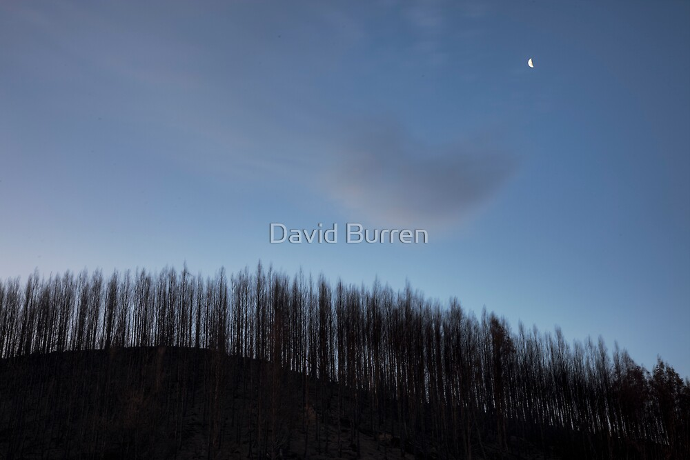 Moon over the aftermath by David Burren
