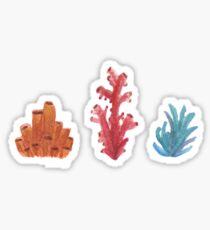 Pegatina Coral