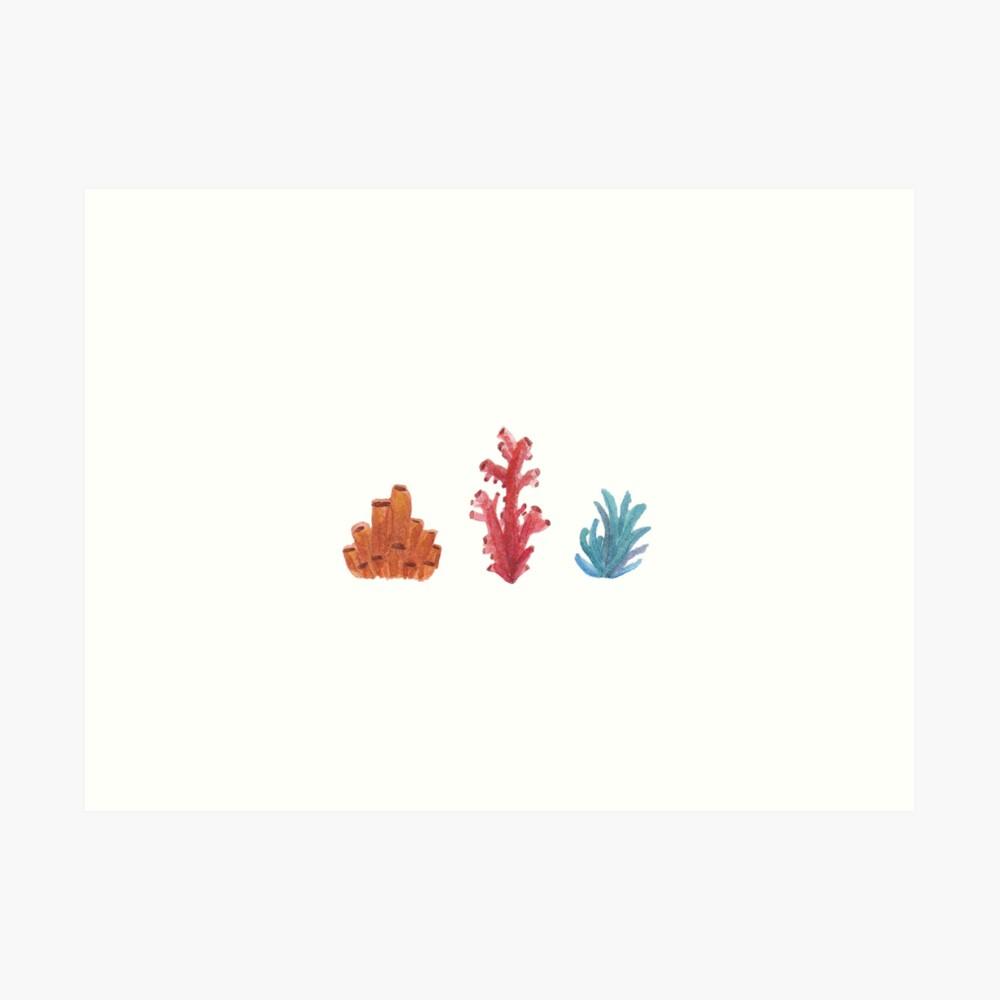 Koralle Kunstdruck