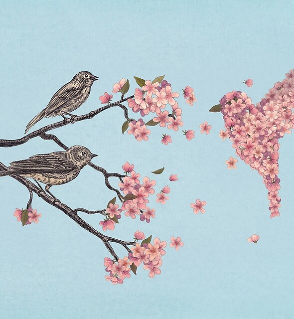 Blossom Bird  by Terry  Fan