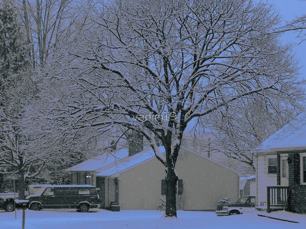 First Snow by vadim19