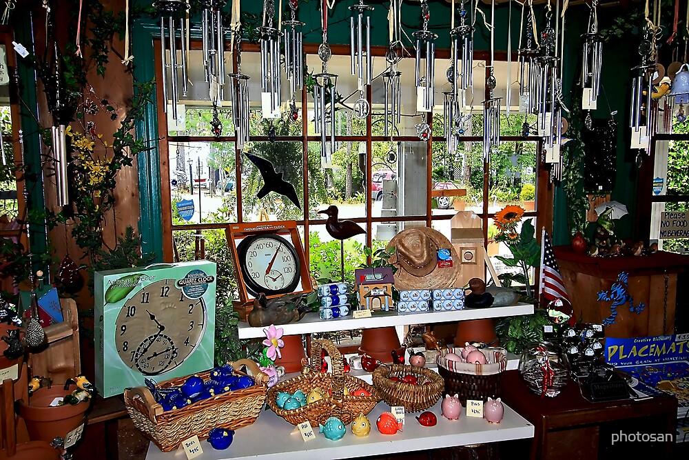 The Audubon Shop - Pawley's Island, S.C. by photosan