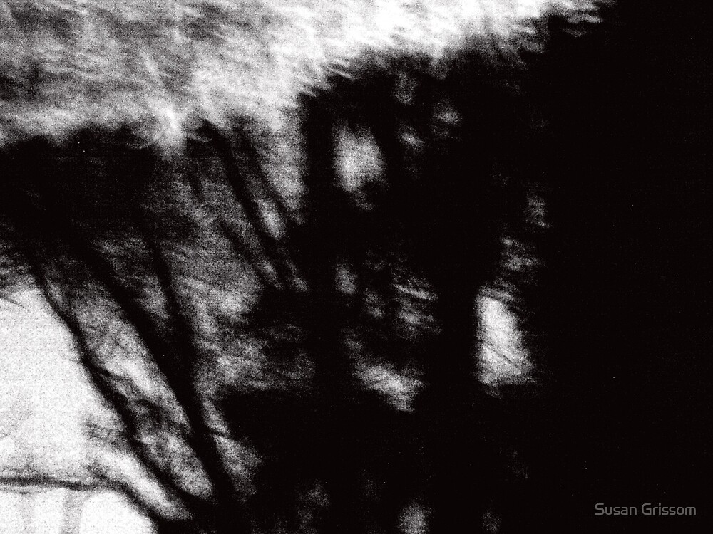 Tree Abstract by Susan Grissom