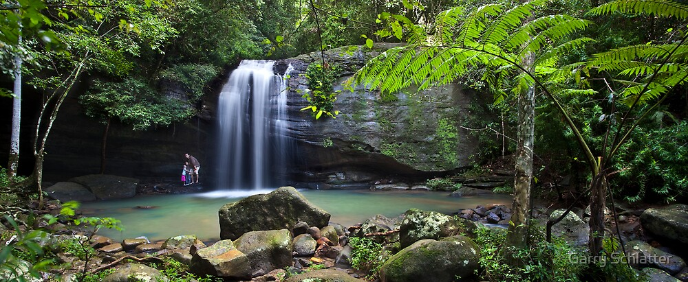 Buderim Falls - Sunshine Coast by Garry Schlatter