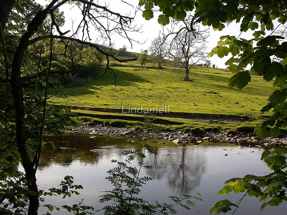 Across The River Swale From Low Ingsque Wood by Lindamell