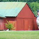 Now THATS a BIG Chicken... by raindancerwoman