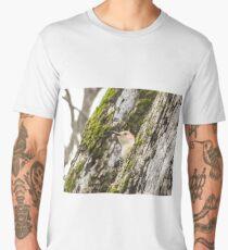 Red Bellied Wood Pecker 2 Men's Premium T-Shirt