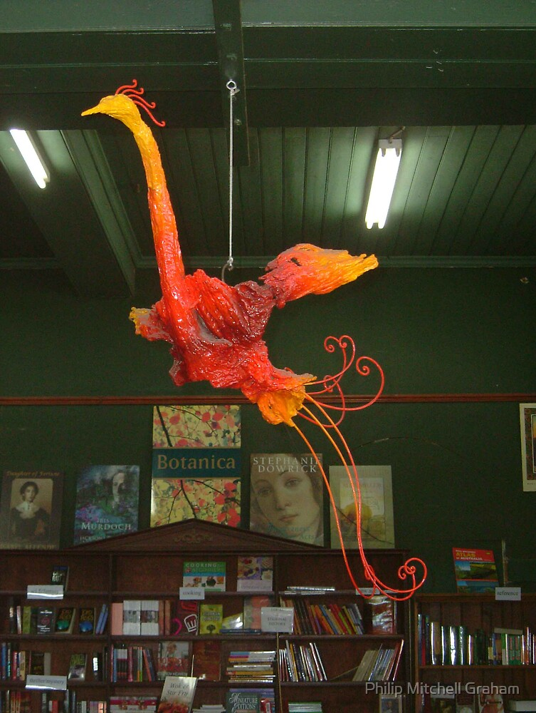 Phoenix by Philip Mitchell Graham