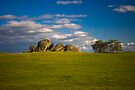 Grassy Knolls by photosbyflood