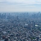 Tokyo from Above by leff-photo