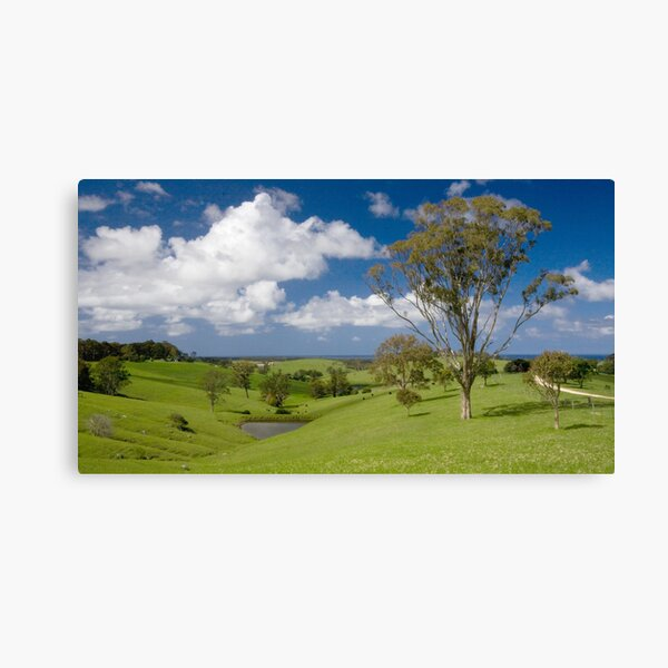 New South Wales South Coast Canvas Print