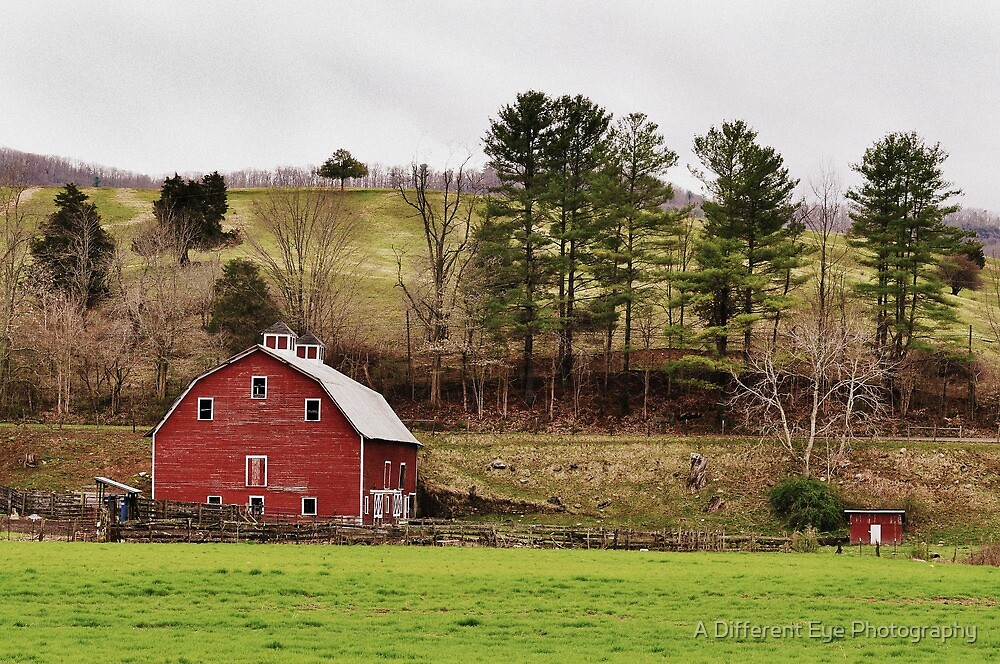 The Barn & The Well House by Heather A McGhee