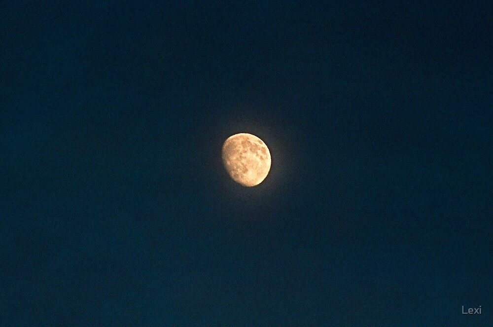 Goodnight Moon! by Lexi