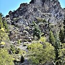 Jagged Peak by Len Bomba