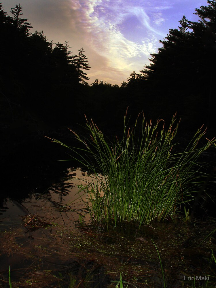 edge of the pond sunset by Eric Maki